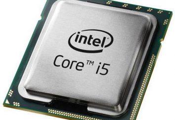 Procesor dla notebooków Intel Core i5-3317U: idealną równowagę wydajności i efektywności energetycznej