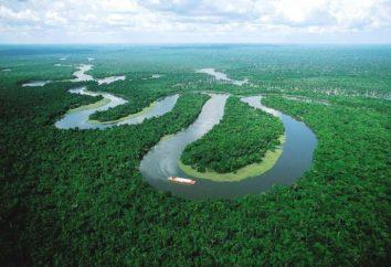 Quelle rivière est plus longue: l'Amazone ou le Nil? Comparer la longueur du Nil et la longueur Amazon