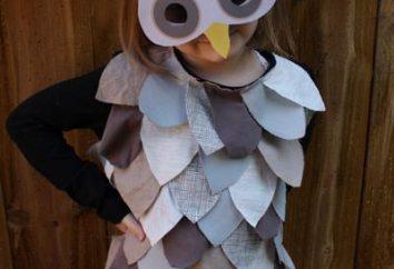 Owl Kostüm: Stufen jedes Element