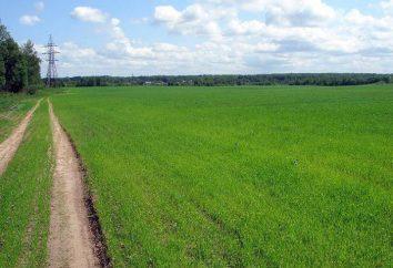 Landwirtschaftliche Organisationen: Management, Buchhaltung, Entwicklung