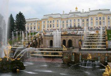 San Petersburgo: museos interesantes. Los museos más interesantes de San Petersburgo