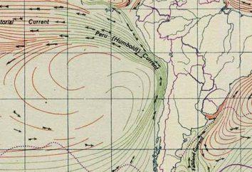 corriente peruana. Características y fenómenos relacionados
