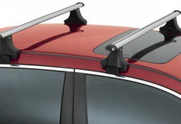 Comment faire les boîtes sur le toit de la voiture avec ses mains