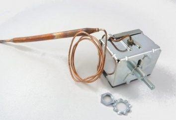 Regulator temperatury dla nagrzewnicy wodnej: co to jest i jak to działa?