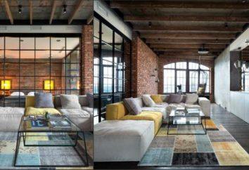 Cuisine-salon, style loft: design, décoration et idées intéressantes