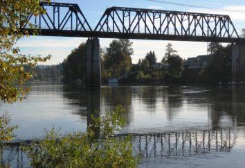 mostu kolejowego: ogólne cechy i gatunki