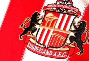 """club de fútbol """"Sunderland"""" – la historia y el éxito del equipo"""