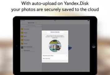 """Cómo crear un """"disco de Yandex"""" para las fotos? Cómo crear un """"Yandex.Disk"""" en el equipo?"""