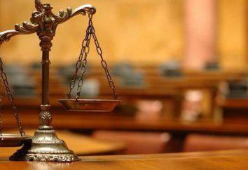 Powody i podstawy postępowania karnego. Sprawdzanie podstawy do ścigania