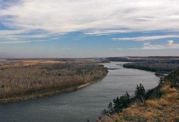 Ob: spadek rzeki i jej krótki opis