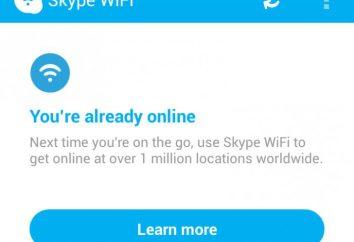 Niezbędne ustawienia połączenia z internetem Skype