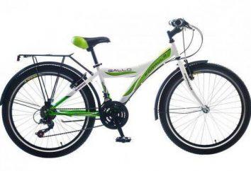 """Bicicleta """"Fórmula"""" – um mercado favorito na categoria orçamento"""