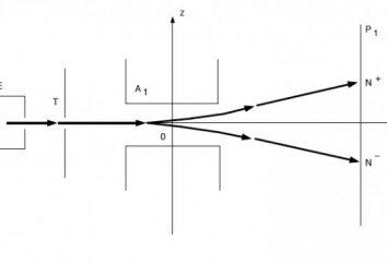 L'esperienza Stern – studio sperimentale della teoria molecolare cinetica