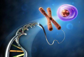 Znane biolodzy domowych i ich odkrycia