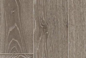 Mattlack für Holz: Beschreibung und Bewertungen