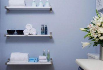 Prateleiras para a banheira: classificação, selecção