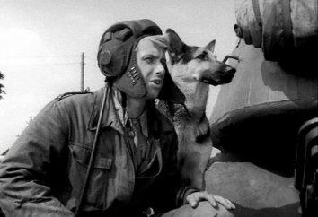 """""""Quattro carri armati e un cane"""": attori e ruoli. Serie televisiva polacca"""
