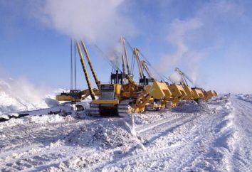 """LLC """"SGC-Truboprovodstroy-5"""": comentários de funcionários da empresa"""