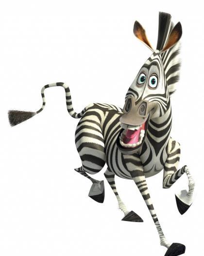 Qual è il nome della zebra quot madagascar e gli altri