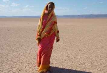 """""""Desert Flower"""" – o livro e filme de mesmo nome"""