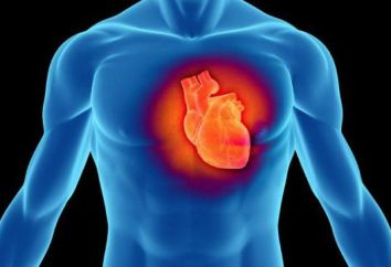 zone de fréquence cardiaque. Formule fréquence cardiaque pendant l'entraînement en toute sécurité. Sport Wristband