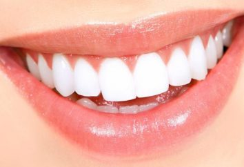 Anatomia della mandibola. anatomia topografica dei denti delle mascelle superiore ed inferiore