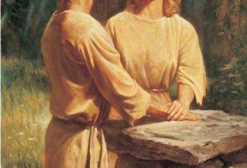 Quantos foram os filhos de Adão e Eva? O que a Bíblia diz sobre os filhos de Adão e Eva?
