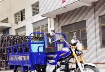 Três rodas de bicicleta de carga: Características, descrição, fotos