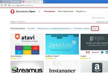 """Todas as formas, como no """"Opera"""", traduzem a página para o russo"""