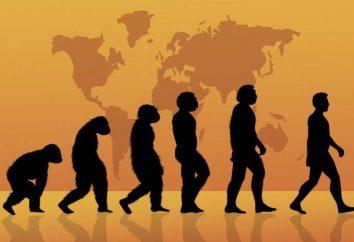 ¿Cuál es la época? ¿Cuál es el significado de nuestra era?