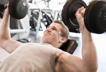 vitamine sportive e il loro impatto positivo sulla vita degli atleti
