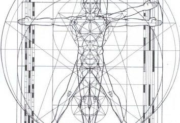 Człowiek Vitruvian Leonardo Da Vinci
