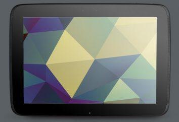 Tablet Nexus – die ideale Lösung für jede Situation