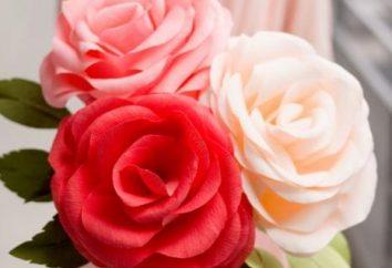 Zrób out kwiat bibułki z rąk
