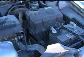 Comment démarrer un moteur diesel par temps froid? Additifs pour diesel par temps froid