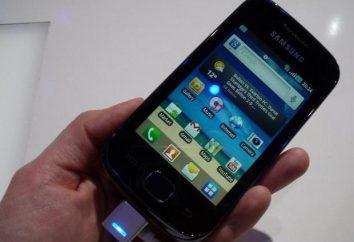 Samsung Galaxy Gio: charakterystyka, opinie. Jak połączyć się z komputerem?
