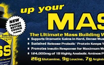 Description et commentaires: Up Your Mass (Gainer)