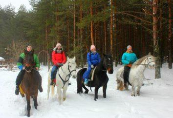 turismo equestre: organização e desenvolvimento na Rússia