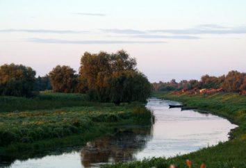 Vilkovo – ucraina Venezia! Consigli, Recensioni di vacanza in Vilkovo