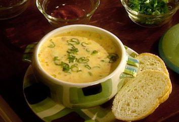 Stać przy kuchence – radość: jak ugotować zupę z serem?