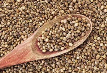 Seeds: die Struktur. Externe und interne Struktur des Samens