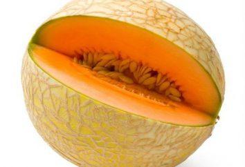 Melon pour l'hiver. Recettes des billettes maison