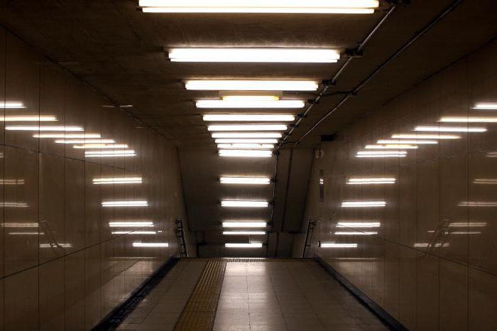 Le lampade fluorescenti è quello che tipi di lampade fluorescenti