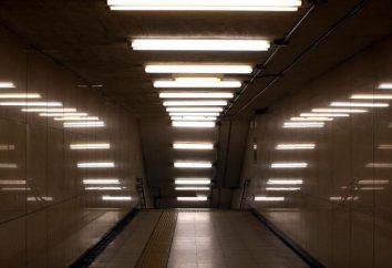 Lampy fluorescencyjne – to co? Typy świetlówek