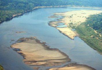 Río vyatka – la principal vía fluvial de la región de Kirov