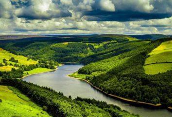 Pradera – Río en las regiones de Leningrado y Novgorod