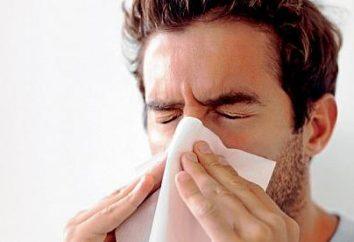 Niż leczyć alergiczny nieżyt nosa? Leczenie tradycyjnymi i ludowymi metodami