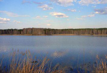 Descrizione Matyrskoe Reservoir, Pesca