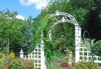 Garten-Design: Sommersaison 2013