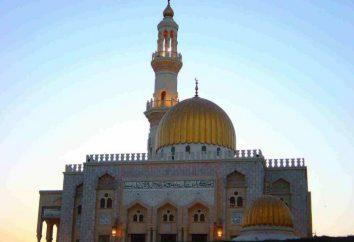 Warum der Islam zur Weltreligion wurde. Essenz und Geschichte des Vorkommens